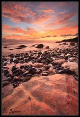 Tapapakanga  Sunrise (Rdugmore2009) Tags: northisland tapapakanga sunrise newzealand