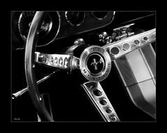 looking for a driver... (Stu Bo) Tags: musclecar mustanglust mustangsunlimited beautiful bestofshow blackandwhite bw bnw canon certifiedcarcrazy coolcar classiccar canonwarrior fordpower streetmachine steeringwheel chromeisking oldschool icon idreamofcarsmotorsandhorsepower