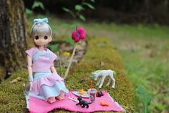 Picnic!!! (Ninotpetrificat) Tags: mamachapp mamachapptoy muñeca anime asiandoll obitsu picnic unicorn unicornio rement gato cat japandolll doll hobby kawaii cute pink toys japantoy handmade