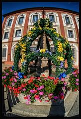 flower fountain (P.Höcherl) Tags: neustadtanderwaldnaab bayern deutschland de nikon d800 naiad 15mm weitwinkel neptuneconvertibleartlenssystem lomography bavaria germany upperpalatinate