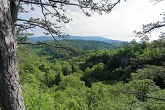 IMG_0745n (rudolf.brinkmoeller) Tags: wandern slowenien karst landschaft natur matavun