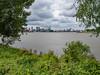 naturemeetsthecity (chrisvanes) Tags: rotterdam eilandvanbrienenoord nature city skyline erasmusbrug willemsbrug maastoren