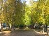 289_8969 (shalivla) Tags: екатеринбург осень