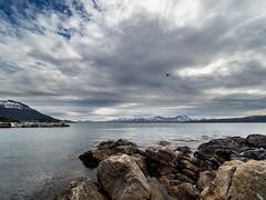 20180528-telegrafbukta-2.jpg (Runar Eilertsen) Tags: tromsø troms norge nordnorge norway northernnorway telegrafbukta bukta sea hav himmel skye landskap