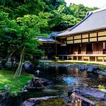 Hojo Garden in  Engakuji Temple, Kamakura : 北鎌倉・円覚寺正続院 thumbnail