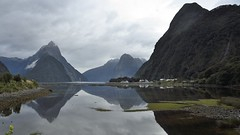 Milford Sound. New Zealand (gsubiza) Tags: milford sound fiord new zealand travel adventure cloudy foggy