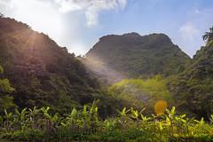 TAM_5104 (T.N Photo) Tags: nikon nikond750 d750 travel landscape river mountains boats skullisland trangan quangbinh northvietnam vn vietnam 2470mm lightroom sky cave travelphotoghapher
