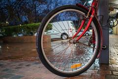 Rust on .... (OzzRod) Tags: sony a7rii smcpentaxk30mmf28 bike bicycle wheel circle rust wet raining thejunction newcastle dailyinjune2018