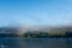 morning mist (alamond) Tags: morning mist fog lake water forest wood sunrise sky blue canon 7d markii mkii llens ef 1740 f4 l usm alamond brane zalar moon