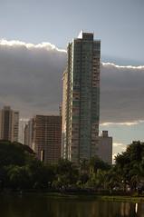 DSC_0708 (Proflázaro) Tags: viagem goiânia goiás cidade entardecer árvore cerrado lago engenharia arquitetura céu nuvem nikond3100 palmeira paisagem paisagemurbana árvoredocerrado brasil