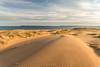 Furrowed Dunes II (Aaron Springer) Tags: michigan northernmichigan lakemichigan thegreatlakes sleepingbearpoint manitoupassage manitouislands sand dune clouds water sunrise shadow texture sidelight outdoor nature landscape