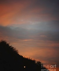 Red colorful sunset (Aliceheartphoto) Tags: fineartamericaartist photography clouds sky trees naturephotography nature sunset pretty colorful ohio cincinnatiphotography red photooftheday photoforsale photolove photootd cameragirl photographie amazingsky beautifulclouds beautiful sony cybershot