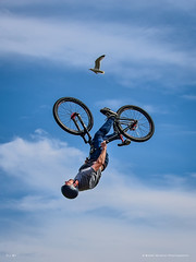 Fly By (MAN1264) Tags: stunt bike bicycle arial isleofman barrymurphyphotography seagull fly