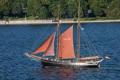 Zuversicht (Burminordlicht) Tags: sailing sailboat sailingboat sailingship segelboot segelschiff segeln kielerwoche kielerförde kiel ship ships boats schiff schiffe