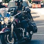 Harley Davidson Heritage Softail. thumbnail
