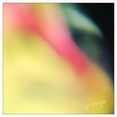 iPhone 画像16