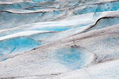 Nigardsbreen glacier (Doede Boomsma) Tags: glacier melting landscape glacierscape macroornot snow ice mountain norway nigardsbreen blue gray white pepper grain climate change