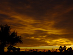 Warm Colours (Scott Douglas Worldwide) Tags: g golden glorious godlike gold god glow great gorgeous freedom f flickrunitedaward fairy firesky fire sky s sunrays smiling sunset sun mystical m mountains misty magic mm perfect peaceful p paradise palmtree palm palms palmtress pp light lakewobegon life landscape lilly leaves love l lovely lonely lifering
