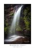 Darkes Forest (sugarbellaleah) Tags: darkesforest refreshing waterfall lush rocks cliffs shower water plunging geology maddensfalls plants flora flowing tumbling creek cascading