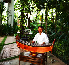 The Cambodian Musician (∆nil Jethwa) Tags: cambodia siem reap hotel entertainer traditional music xylophone wooden polite smiling