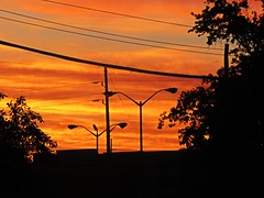 IMG_5681 (kennethkonica) Tags: clouds tree sky blue canonpowershot canon hoosier random usa midwest america indiana indianapolis color indy sunrise dawn morning lines wires streetlights mood