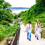 Hydrangea's path of Jojuin Temple, Kamakura : 成就院より由比ヶ浜の展望 thumbnail