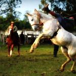 Guigo e Mochila da Entrevero thumbnail