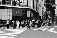 Tokyo #bnwfilm (31lucass shots) Tags: peopleinstreet people snapshots streetsnap vintagecamera 50mmlens tokyostreet japanstreet japan tokyo shootfilm analoguefilm negativefilm blackandwhitefilm minoltax700 minoltafilm fomapanfilm fomapan100 bnwfilm