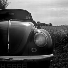 Bug (Dave.Miles) Tags: bug vw vwbeetle olympus olympusflex ilford ilfordfp4plus 120film mediumformat filmisnotdead film analogue