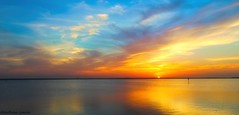 """""""For whatever we lose (like a you or a me); It's always our self we find in the sea.""""       —e.e. cummings (Kathryn Louise18) Tags: canon kathrynlouise florida landscape seascape coastel sunrise sunset sanford lakemonroe stjohnsriver nature eecummingsquote"""