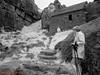 St Govans Head  31.05.2018_005 (Nigel Cliff) Tags: pembrokeshire samyang12mmf2 stgovanshead