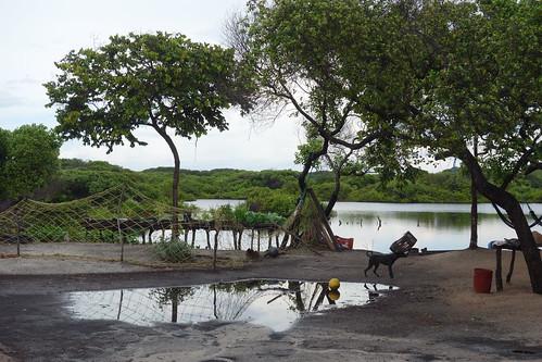 Voici la vue d'une de la maison de l'oasis dans laquelle nous vivions