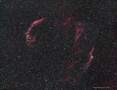Cygnus Loop or Veil Nebula (mtrosenthal) Tags: astrometrydotnet:id=nova2631481 astrometrydotnet:status=solved