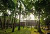 Ngôi nhà đẹp như cổ tích lọt thỏm giữa vườn cây ở Hà Nội (nhadepso) Tags: nha dep nhà đẹp nội thất kiến trúc căn hộ phố biệt thự nice house beautiful belle maison interior design de villa architecture larchitecture dappartement apartment