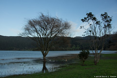 Green Lake (David J. Greer) Tags: sailtrainexplore rubicon3 san miguel azores portugal winter travel adventure dusk sunset reflections green lake lagoa das sete cidades still peaceful sky hills clouds weeds tree trees shoreline