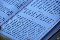 16. Всех Святых Церкви Русской 10.06.2018