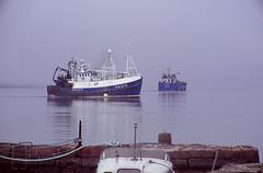Consortium Passing (04mod) (AngusInShetland) Tags: consortium pd174 peterhead shetland lerwick lerwickharbour whalsay lcl feedcarrier salmon havilah boat ship outdoor fishingboat trawler fujichromevelvia100 fuji minoltadynax7000i