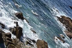 DSC_2683 (marcnico27) Tags: 2018 marcnico27 outdoor sansebastian spain shore wet donostia