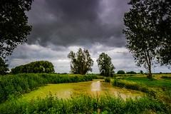 Hitland (ulbespaans) Tags: landschap landscape green groen trees bomen sky moodynature reflection wolken