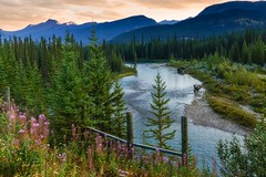 Time to Enjoy the View (Thaiexpat) Tags: water mountain sky forest wood landscape tree mountainside river canada flowers sonyrx1rii zeiss35mm