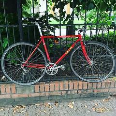 #racer #roadsters #belouve #berlincycles #bike #berlin #fixie #rennrad #street #cycling #bicycle #fixedgear #velocity #bicyclist (BERLIN CYCLES) Tags: berlin berlincycles speedbikes fixies hipster fixedgear