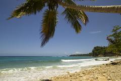 Playa Preciosa (JR-pharma) Tags: dominicanrepublic républiquedominicaine dr dominican republic republicadominicana playapreciosa riosanjuan paradise turquoise playanavio cabrera