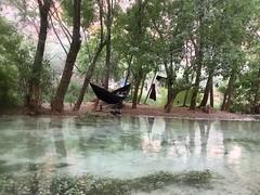 Havasupai, AZ (- Adam Reeder -) Tags: wwwkk6gpvnet kk6gpv adam reeder adamreeder areed145 water lakeside canoe fountain maze y2018 m04 d28 lat360 lon1130 supai coconino arizona united states photo jpg havasupai az goose beerglass dingo pembroke parkbench americanalligator tree