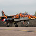 EGWC - Sepecat Jaguar GR3 - Royal Air Force - XX119