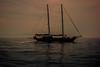 Island hopping... (Dafydd Penguin) Tags: sailboat sail yacht sailing yachting schooner sea water coast coasting silhouette island procida bay naples italy napoli cruise cruising leica m10 7artisans 50mm f11 mediterranean