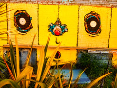 Swamped (Steve Taylor (Photography)) Tags: jacob yikes ryan face flax graffiti mural streetart yellow weird crazy odd strange brick block newzealand nz southisland canterbury christchurch cbd city plant weeds dtr