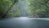 sérénité sous la pluie battante (JDS Fine Art Photography) Tags: landscape longexposure rain inspirational lake water stream forest woods trees impressionist artistic dreamy dreamworld fantasy fantasyworld