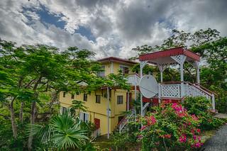 Colorful Charlotte Amalie