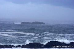 Pacific Ocean Surf (youngwarrior) Tags: sealrockstatepark oregon pacificocean ocean surf