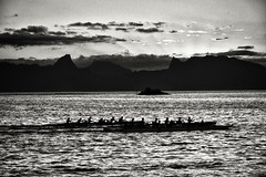 Sunset Race  (Tahiti) (Harald Philipp) Tags: paradise holiday vacation tourism luxury tourist exotic destination travel adventure island beautiful romantic blackandwhite bw monochrome schwarzweiss grauzone nocolor dark shadows contrast nikon nikkor d810 light sun dusk twilight sunset cloud clouds cloudy rays silhouette southpacific tahiti pacificocean volcano racing boatracing competition rowing oars grain frenchpolynesia polynesia